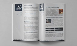 Vision Risk Services brochure
