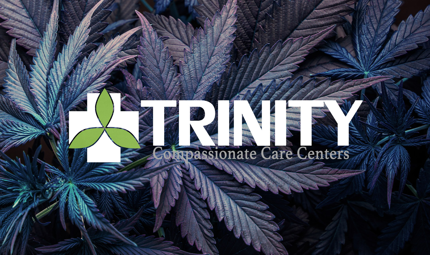 trinity-medical-marijuana-featured