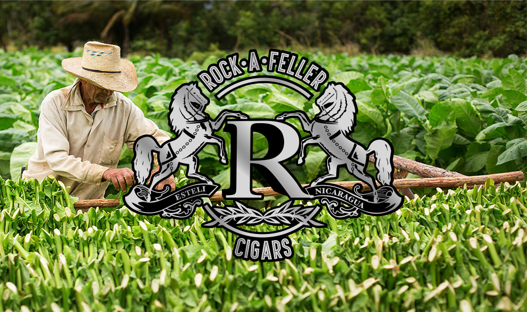 Rock a feller cigars logo mockup